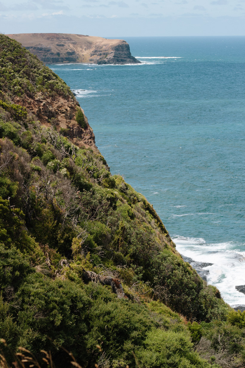 140216_MorningtonPeninsula-38