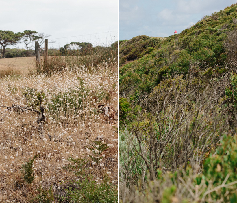 140216_MorningtonPeninsula-Collage-2
