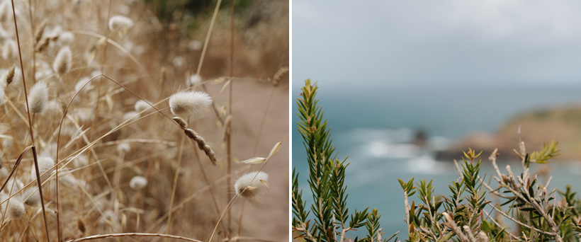 140216_MorningtonPeninsula-Collage-3